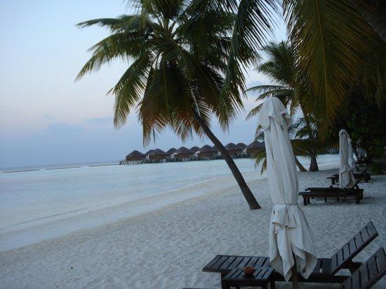 Vakarufalhi Island Resort: La spiaggia