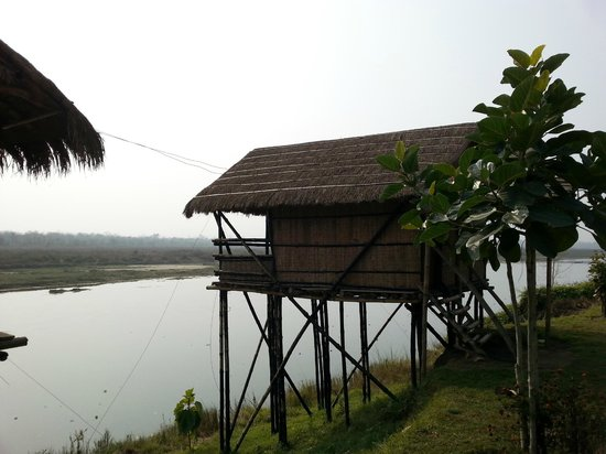 Wildlife Adventure Resort : bamboo cottage