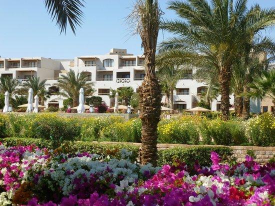 Fort Arabesque Resort, Spa & Villas : hotel from beach