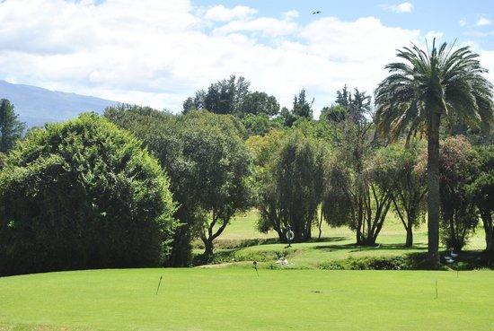 Fairmont Mount Kenya Safari Club: The greens