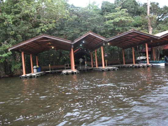 Pachira Lodge: Arrival/departure bay