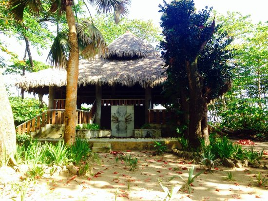 CabareteYoga: Yoga Temple