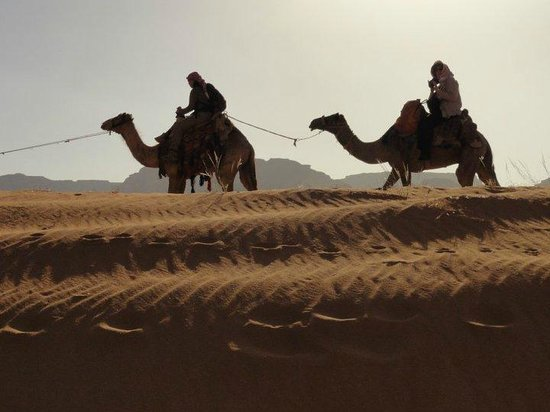 See Jordan Tours - Camel Ride in Wadi Rum: Wadi Rum