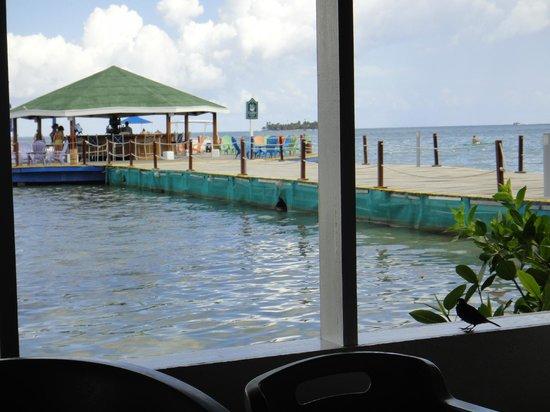 Decameron Marazul: vista del muelle y el bar