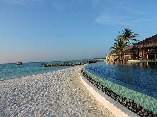 The Residence Maldives : Piscine et Bar