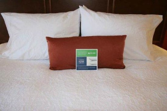 Hampton Inn Tropicana: Hampton Inn Las Vegas