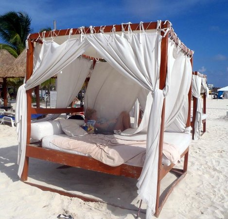 Privilege Aluxes: Our beach bed