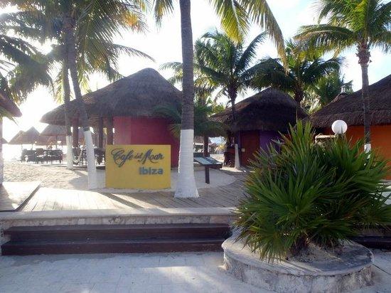 Privilege Aluxes: Cafe Del Mar