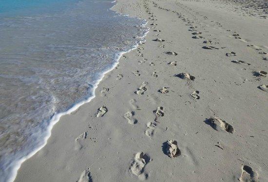Club Med Turkoise Turks Caicos Footprints On The Beach Isn T