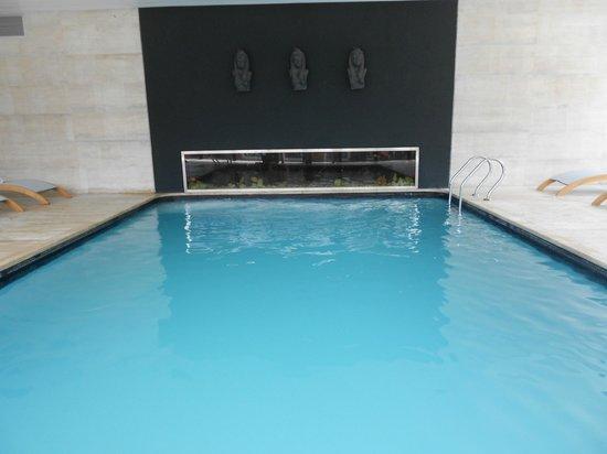 Barradas Parque Hotel & Spa: Piscina climatizada con una pecera con peces tropicales