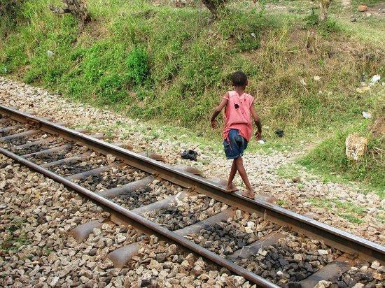 Lunatic Line : kids en route - looking for sweets
