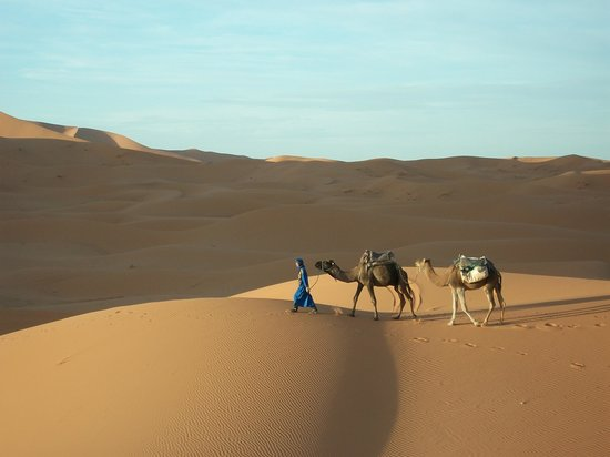 Chez les Habitants: Camel ride through desert with Ahmed: very personal experience with the desert.