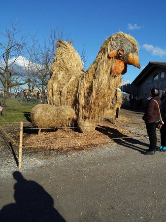 Jucker Farm : ��