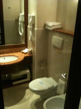 Best Western Hotel Antico Termine : Bagno