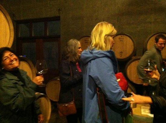Oregon Wine Tours: wine country birthday tour