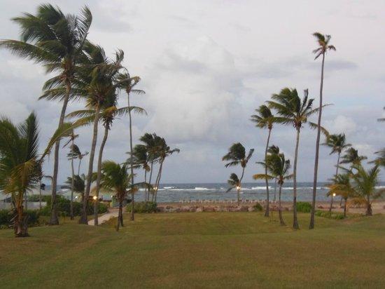 Nisbet Plantation Beach Club: Walkway