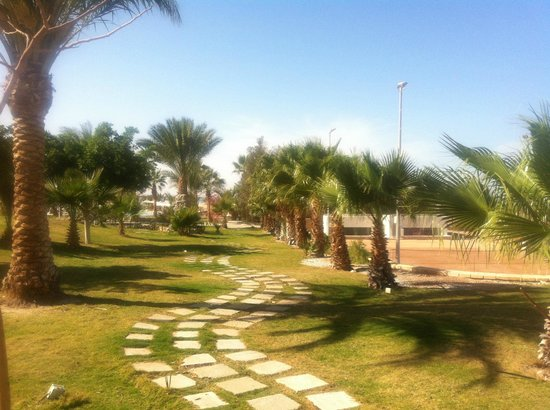 Coral Beach Resort : 1
