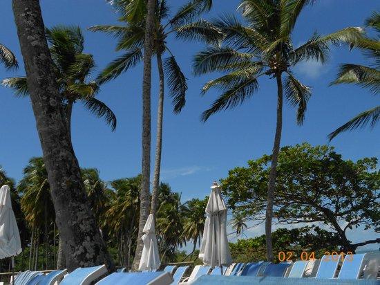 Club Med Itaparica: pileta