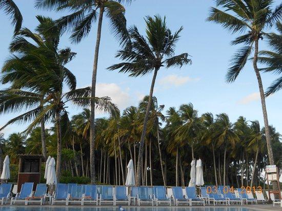 Club Med Itaparica: pileta vista