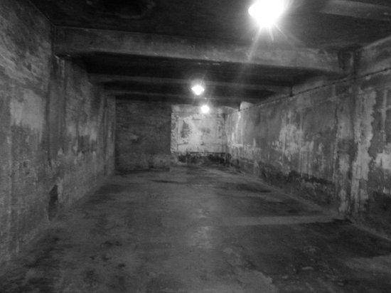 Krakow Direct Private Tours: Auschwitz gas chamber