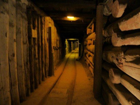 Krakow Direct Private Tours: Wieliczka salt mines