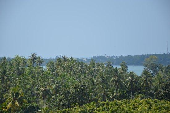 Villa Mayurana: Eine super Aussicht
