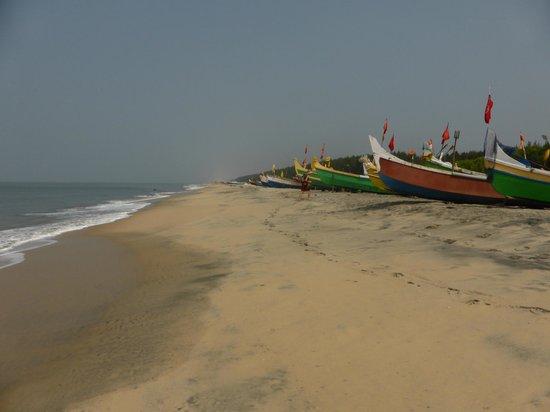 Alleppey Beach Resorts: Båtar