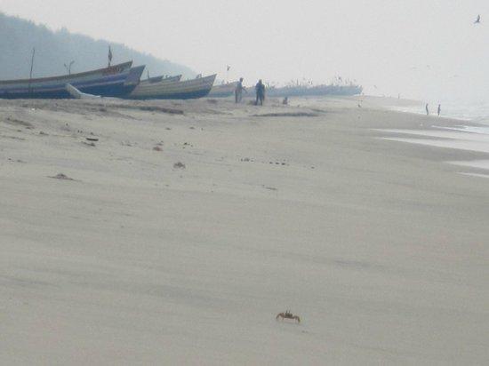 Alleppey Beach Resorts: Stranden
