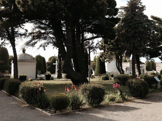 Cementerio Municipal: Cementerio Punta Arenas