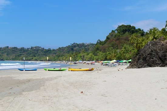 Arenas del Mar Beachfront and Rainforest Resort, Manuel Antonio, Costa Rica: Playa Espadilla