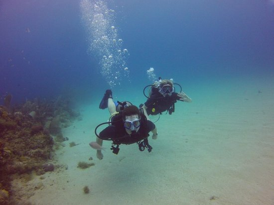 Couples Tower Isle : We are PADI Scuba Divers!