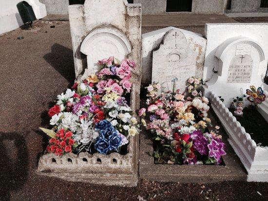 Cementerio Municipal: Tumbas de niños