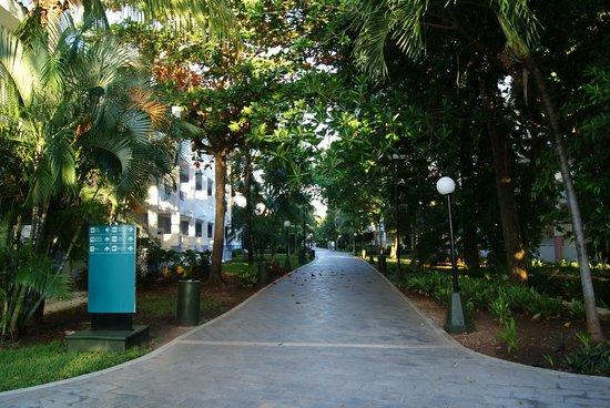 Hotel Riu Playacar : Main walkway