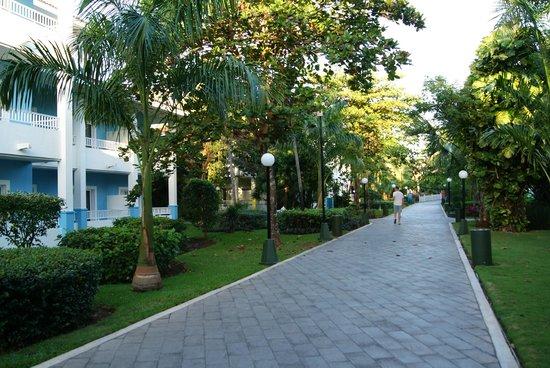 Hotel Riu Playacar : Main walkway to rooms