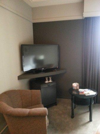 Pullman Paris Montparnasse: Big TV