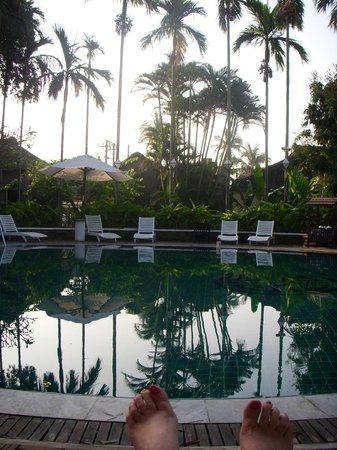 Hoi An Ancient House Resort & Spa : la piscine