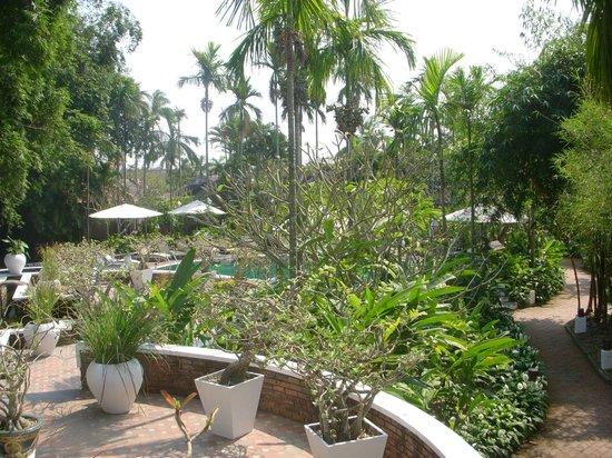 Hoi An Ancient House Resort & Spa : le jardin