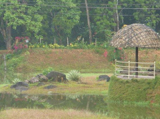 Tapovan Green County Resorts : Lake