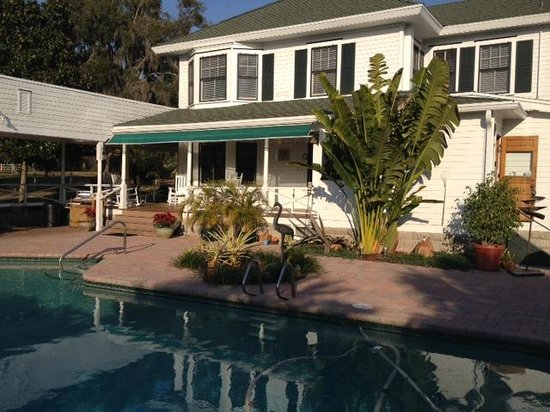 Grandview Bed and Breakfast: Grandview backyard & pool