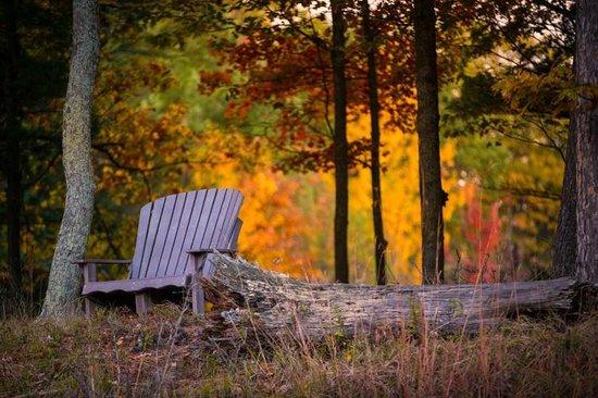 Canoe Bay: Autumn is sublime