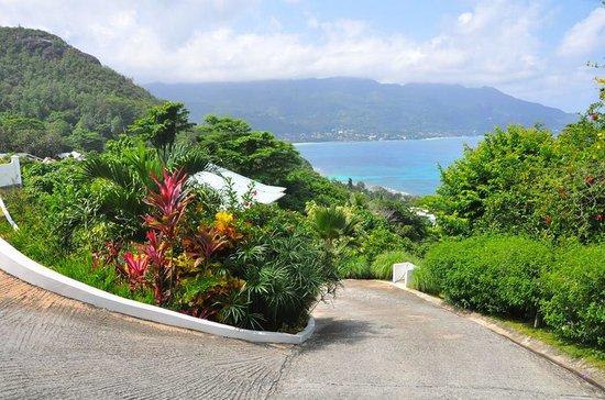 Petit Amour Villa: garden