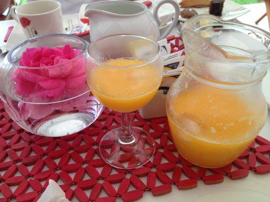 Red Wind B&B: Suco de laranja feito na hora.