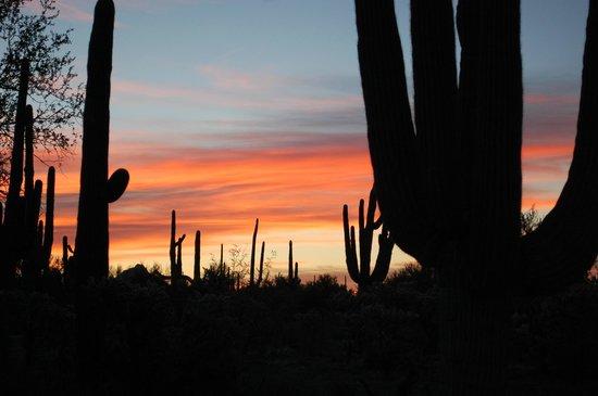 Hacienda Linda: Postcard sunset