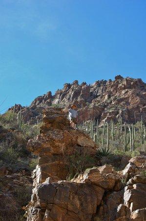 Hacienda Linda: Rock climbing in Sabino Canyon