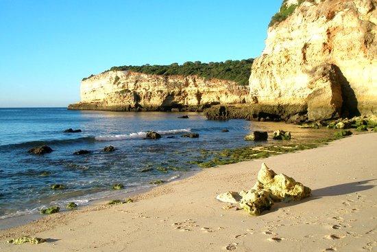 Be Smart Terrace Algarve: Senhora Da Rocha Beach