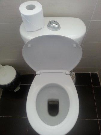Dean Hamlet Hotel : 'clean' toilet