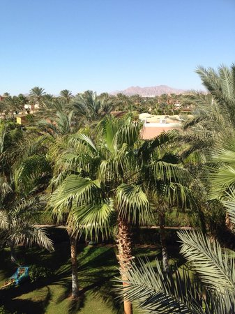 Club Magic Life Sharm el Sheikh Imperial: View from our room block 20