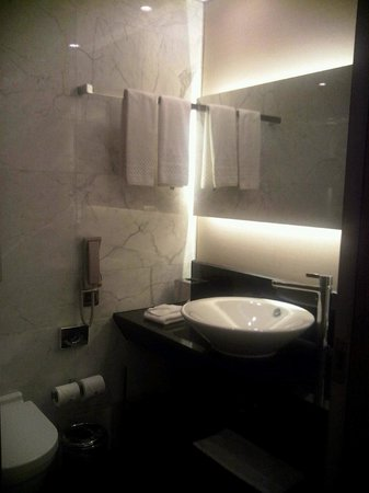 DoubleTree by Hilton Istanbul - Old Town : toilet