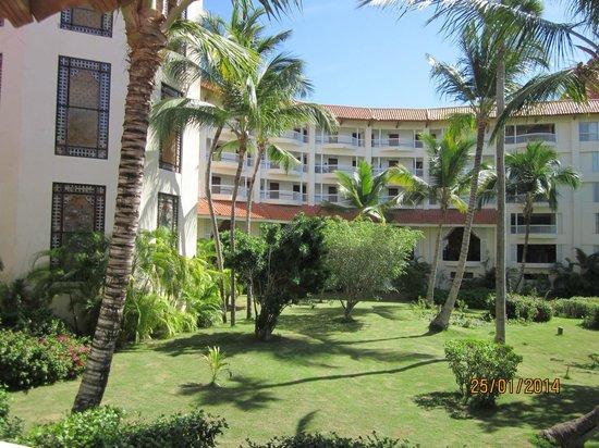 Barcelo Punta Cana: Vue arrière chambre