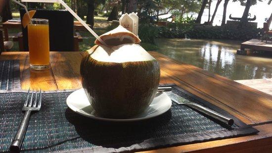 The Tubkaak Krabi Boutique Resort : Une noix de coco fraiche